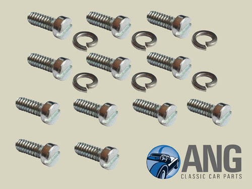 DASH POT, CARBURETTOR FLOAT CHAMBER SCREWS (12) ; MGB, MGB-GT